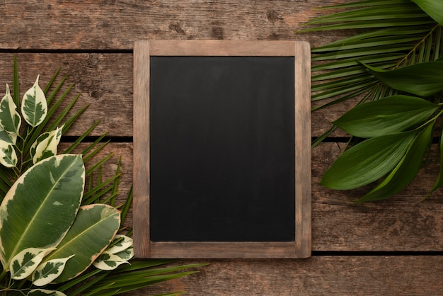 Draufsicht der schönen pflanzenblätter mit tafel Kostenlose Fotos