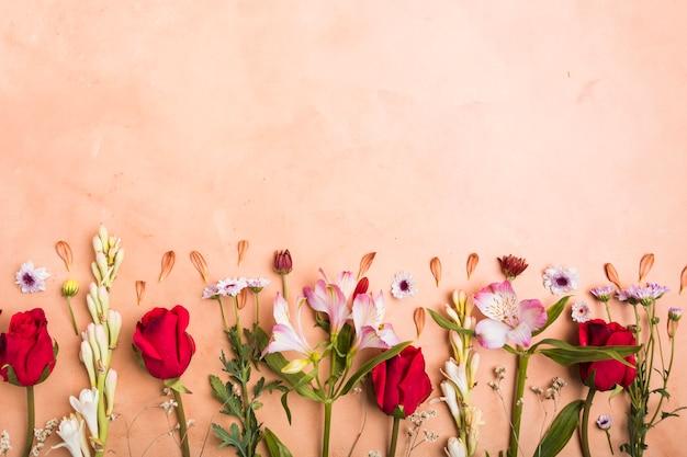 Draufsicht der zusammenstellung der mehrfarbigen frühlingsblumen Kostenlose Fotos