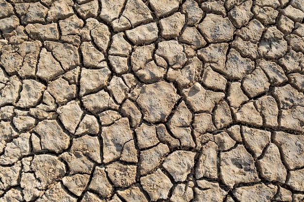 Draufsicht des globalen erwärmungsbeschaffenheitsmusters der wüstenwärmeschmutzlehm Premium Fotos