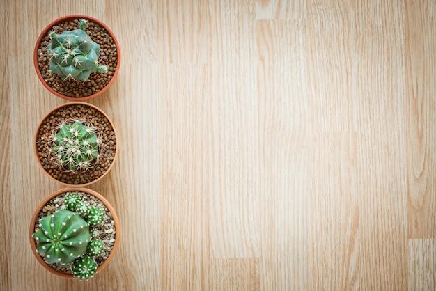 Draufsicht des mischungs-kaktus-topfes auf hölzernem hintergrund mit kopienraum-ebene legen art Premium Fotos