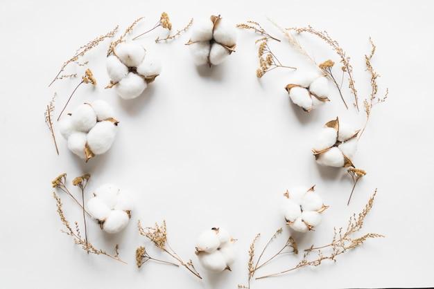 Draufsicht von baumwollblumen Kostenlose Fotos