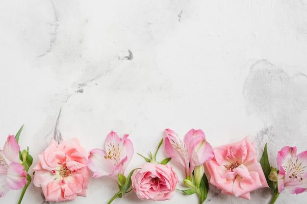 Draufsicht von frühlingsrosen und -orchideen mit marmorhintergrund und kopienraum Kostenlose Fotos