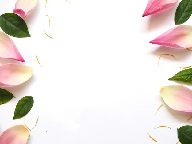 Draufsicht von lotusblättern mit grünen blättern und gelbem pollen auf weiß Premium Fotos