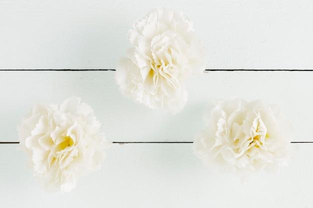 Draufsichtblumen auf hölzernem hintergrund Kostenlose Fotos