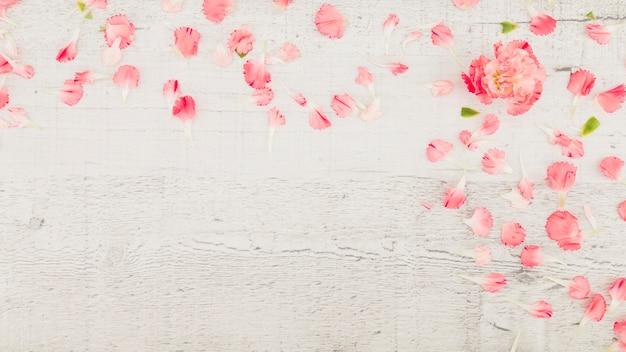 Draufsichtblumenblätter auf hölzernem hintergrund Kostenlose Fotos