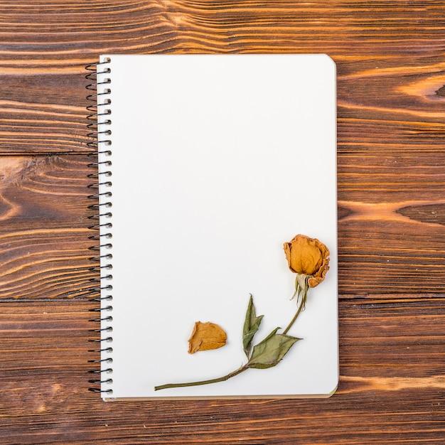 Draufsichtnotizbuch mit trockener blume auf die oberseite Kostenlose Fotos