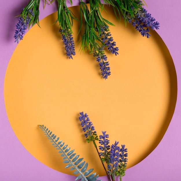 Draufsichtpapierkreis mit lavendel dazu Kostenlose Fotos