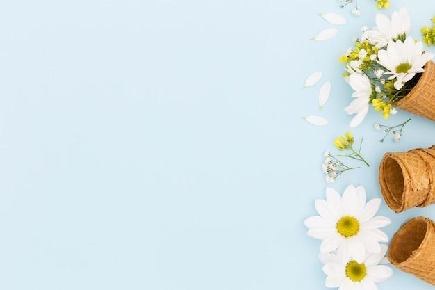 Draufsichtrahmen mit kegeln und gänseblümchen Kostenlose Fotos