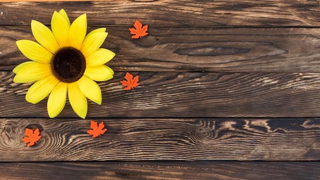 Draufsichtrahmen mit sonnenblume auf hölzernem hintergrund Kostenlose Fotos