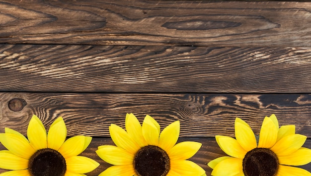 Draufsichtrahmen mit sonnenblumen und kopieraum Kostenlose Fotos