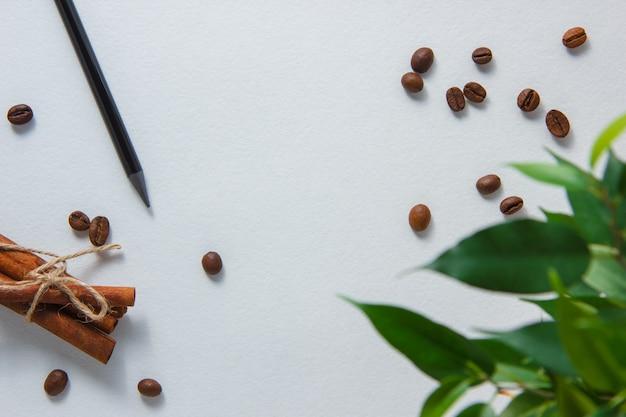 Draufsichtstift mit kaffeebohnen, trockenem zimt, pflanze auf weißem hintergrund. horizontal Kostenlose Fotos