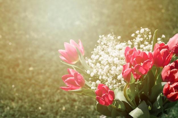 Draußen tulpen bouquet Kostenlose Fotos