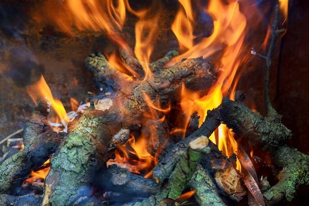 Drei brennende knüppel im heißen ofen Premium Fotos