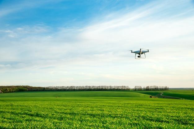 Drohne fliegt über grünes weizenfeld im frühjahr Premium Fotos