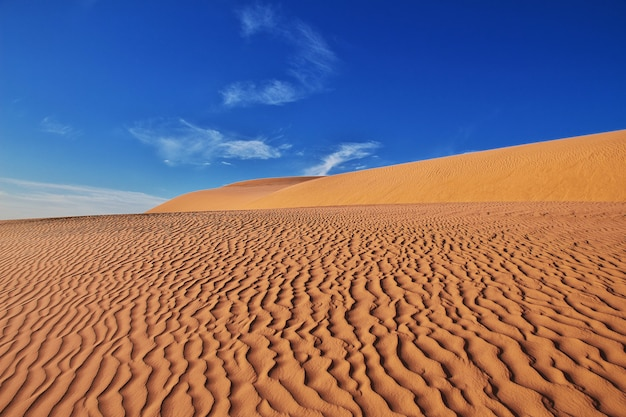 Dünen in der sahara im herzen afrikas Premium Fotos