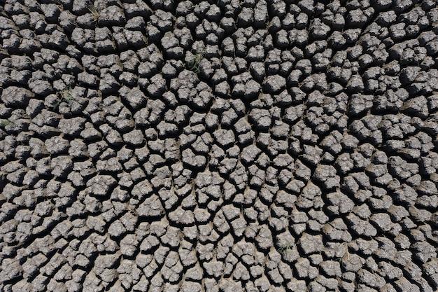 Dürre tief rissiger erdhintergrund beleuchtet von der sonne Premium Fotos