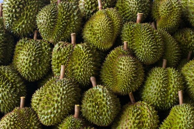 Durian mit grünen dornen, schön angelegt und mit natürlichem licht. Premium Fotos