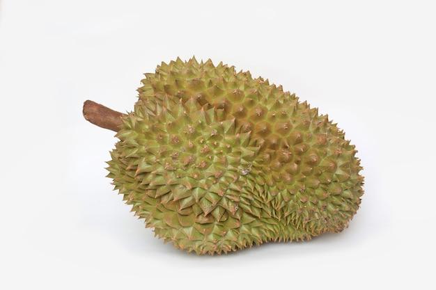 Durianfrucht lokalisiert auf weißem hintergrund. könig der früchte in südostasien Premium Fotos