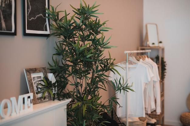 Ecke eines raumes mit einfacher garderobe und einer anlage Kostenlose Fotos