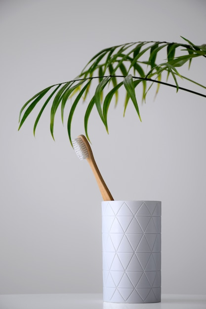Eco bambus zahnbürste in weißem halter mit palmblatt Premium Fotos