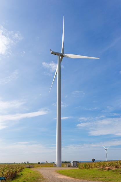 Eco-power, windkraftanlage auf dem feld des grünen grases und des mais über dem blauen bewölkten himmel Premium Fotos