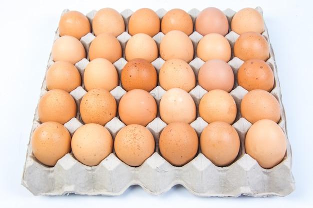 Ei in einer eikiste auf weißem hintergrund Premium Fotos