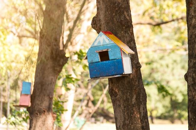 Eichhörnchenhaus auf den bäumen am allgemeinen park. Premium Fotos