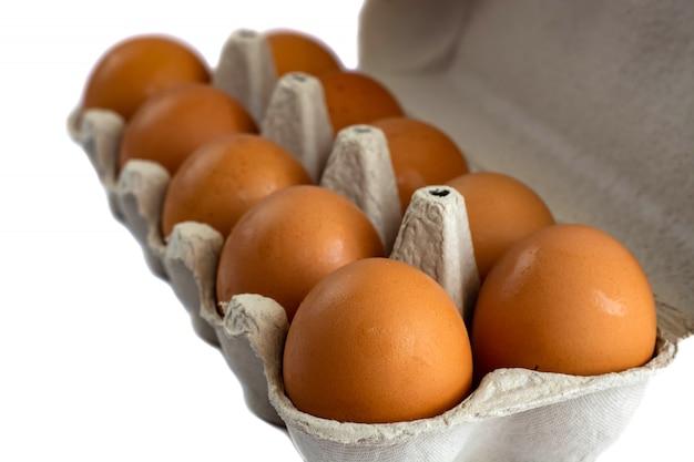 Eier im papiertellersegment getrennt auf weiß Premium Fotos