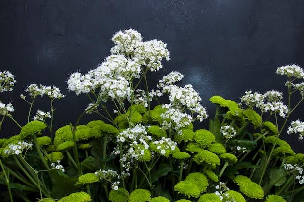 Ein blumenstrauß von grünen blumen auf einem grauen hintergrund Premium Fotos