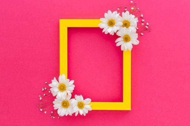 Ein gelber rahmen, verziert mit weißem gänseblümchen und atem des babys, blüht über der rosa oberfläche Kostenlose Fotos