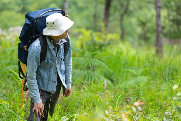 Ein Glucklicher Wanderer Geht Mit Einem Rucksack Durch Den Wald Kostenlose Foto