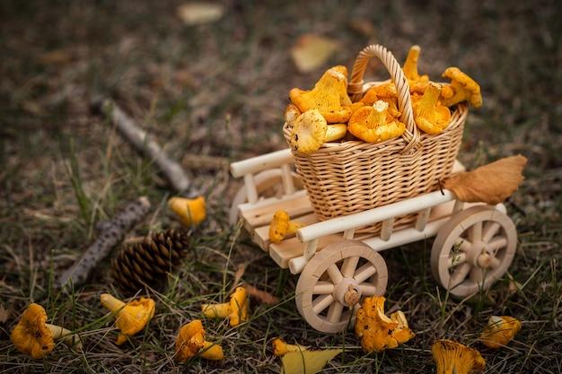 Ein hölzerner wagen mit vegetarischem lebensmittel der frischen pilze Premium Fotos