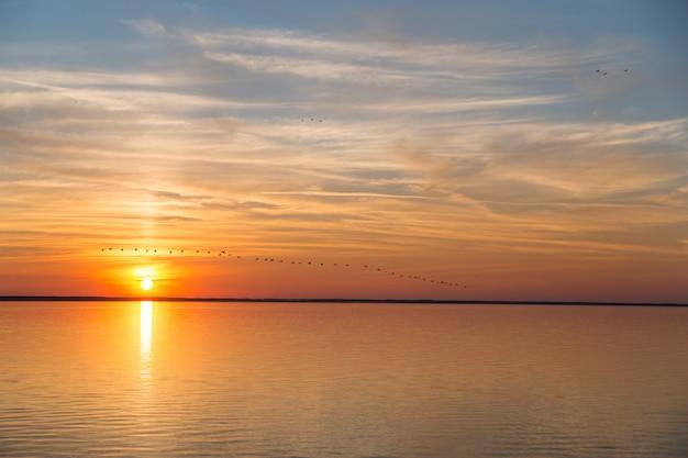Ein vogelschwarm fliegt weg, um bei sonnenuntergang zu überwintern. schöner goldener sonnenuntergang auf dem meer, dem blauen himmel und der orange sonne. Premium Fotos