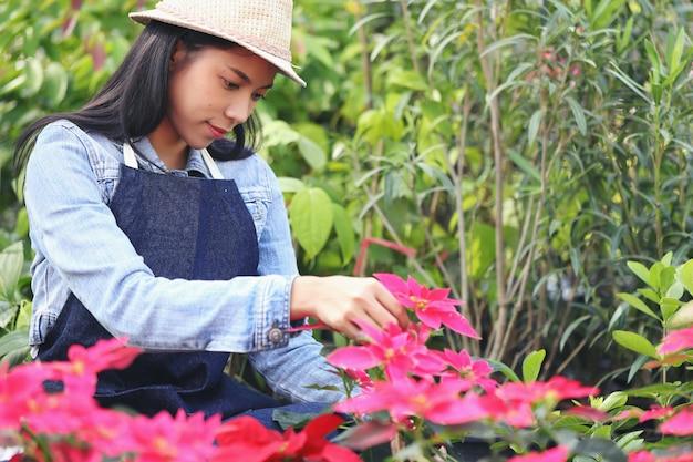 Eine asiatische frau, die ein blumengartengeschäft besitzt, zählt die blumen entsprechend der kundenbestellung. Premium Fotos