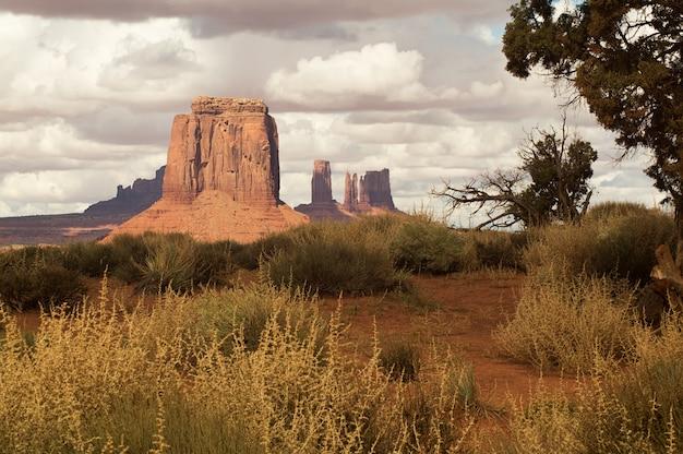Eine erstaunliche ansicht des stammes- parks des monumenttal-navajos, utah-arizona, usa. Premium Fotos