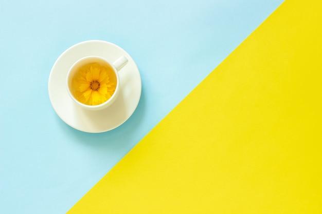 Eine gelbe coreopsisblume in der schale auf hintergrund des gelben und blauen papiers Premium Fotos