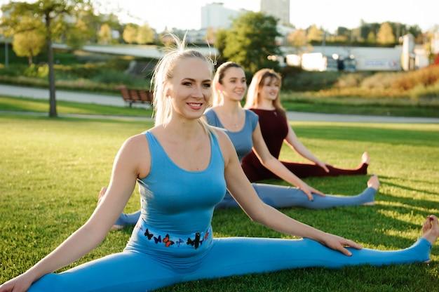 Eine gruppe erwachsener frauen, die draußen an yoga im park teilnehmen Premium Fotos