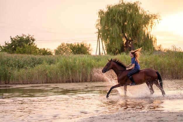 Eine junge frau, die ein pferd auf einen flachen see reitet. ein pferd läuft auf dem wasser bei sonnenuntergang. kümmere dich um das pferd und gehe mit ihm. kraft und schönheit Premium Fotos