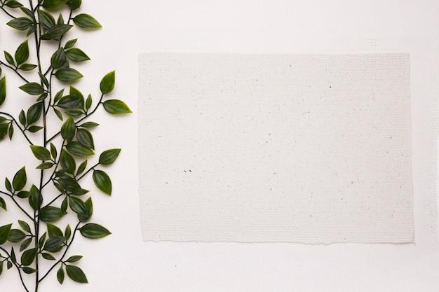 Eine künstliche grünpflanze nahe dem leeren papier auf weißem hintergrund Kostenlose Fotos