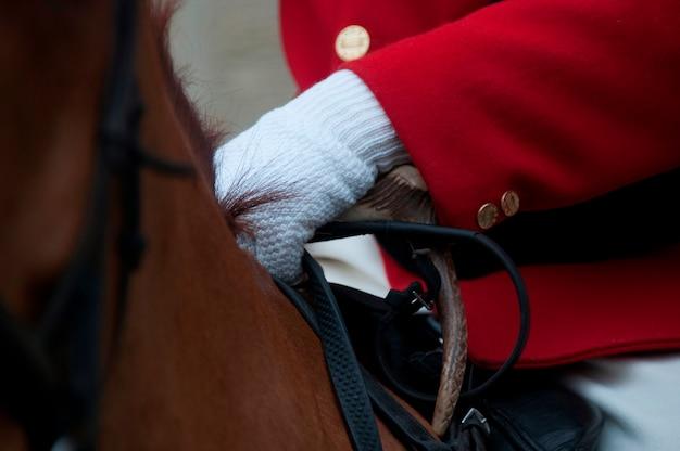 Eine nahaufnahme eines pferdes mit einem reiter Premium Fotos