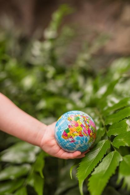 Eine obenliegende ansicht der hand kugelball über der grünpflanze halten Kostenlose Fotos