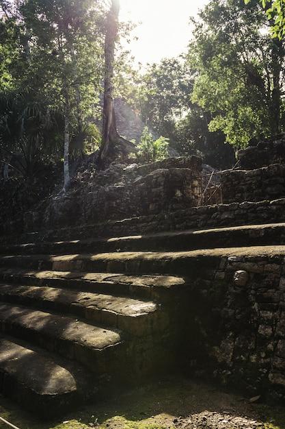 Eine sonne mit den bäumen und den ruinen mayas in coba Premium Fotos