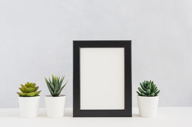 Eingemachte kaktuspflanzen mit dem leeren bilderrahmen gegen weißen hintergrund Kostenlose Fotos