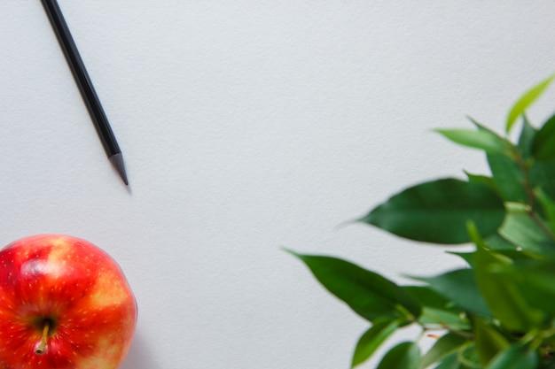 Einige bleistift mit apfel, pflanze auf weißem hintergrund, draufsicht. platz für text Kostenlose Fotos