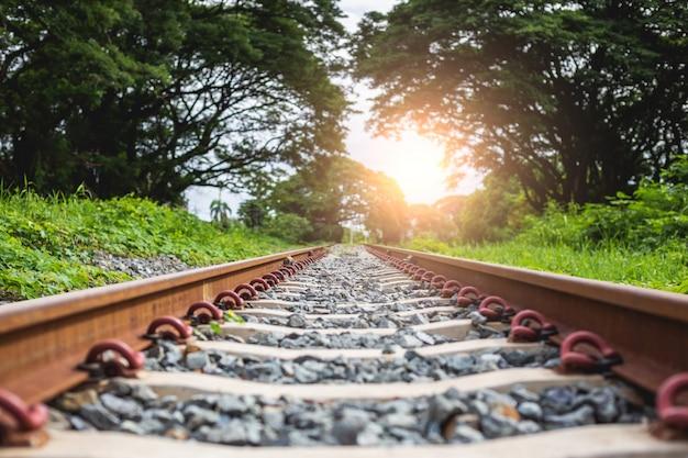 Eisenbahn mit dem stein, der den wald führt Premium Fotos