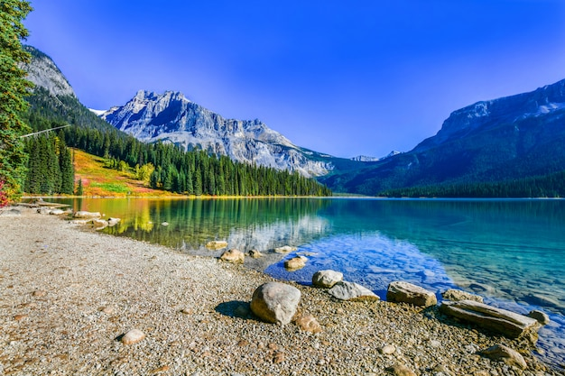Emerald lake, yoho national park in kanada Premium Fotos