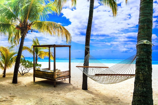 Entspannende tropische ferien mit hängematte unter palme. mauritius insel Premium Fotos