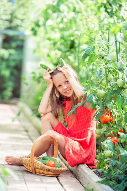 Entzückendes kleines mädchen, das gurken und tomaten im gewächshaus erntet. Premium Fotos
