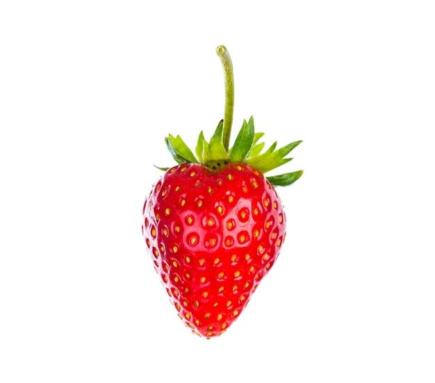 Erdbeere getrennt auf weißem hintergrund Kostenlose Fotos