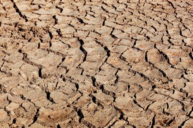 Erde durch dürre geknackt Premium Fotos